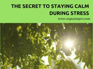 how to stay calm during stress